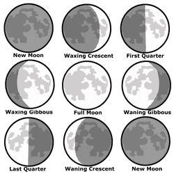New Moon Waxing Crescent Moon First Quarter Moon Waxing Gibbous Moon ...